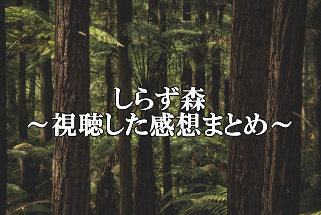 しらず森感想
