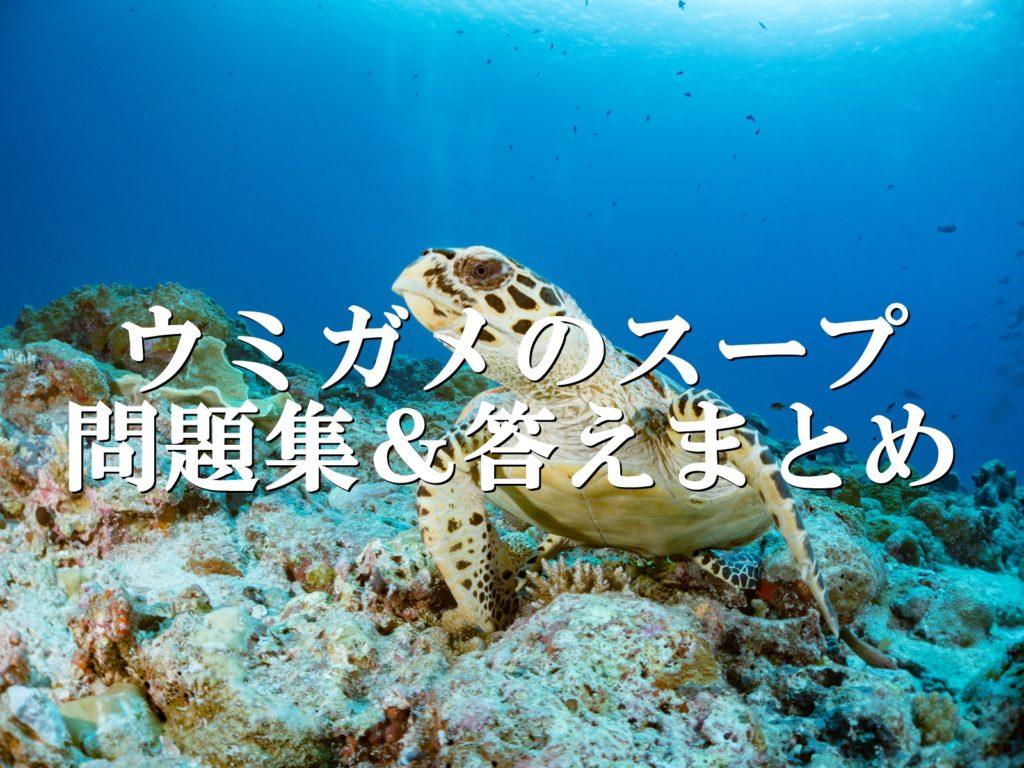 ウミガメ の スープ 良 問